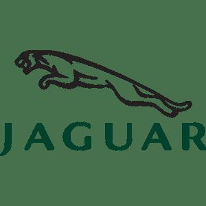 Jaguar Steuergeräte